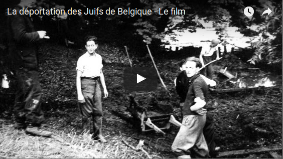 Documentaire de 20'